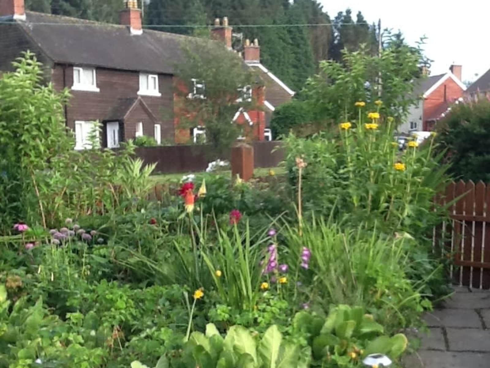 Housesitting assignment in Llanwrtyd Wells, United Kingdom