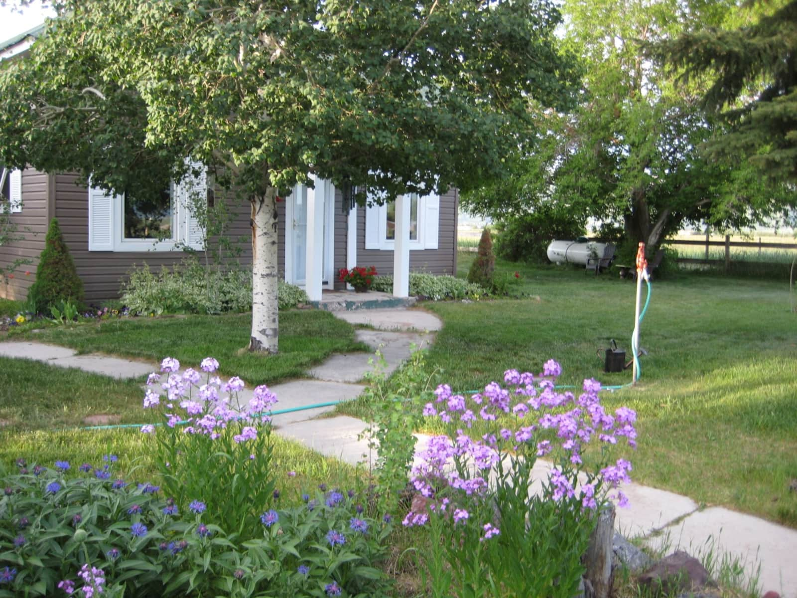 Housesitting assignment in Fairview, Wyoming, United States
