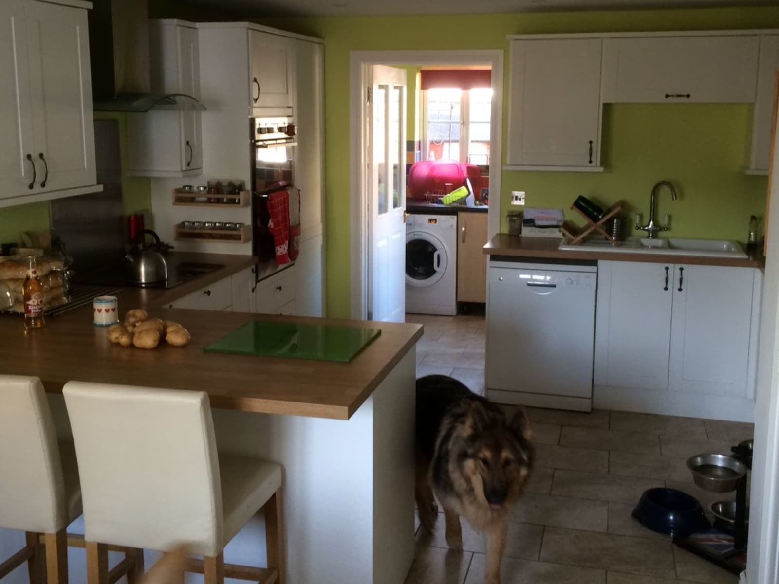 Housesitting assignment in Swindon, United Kingdom