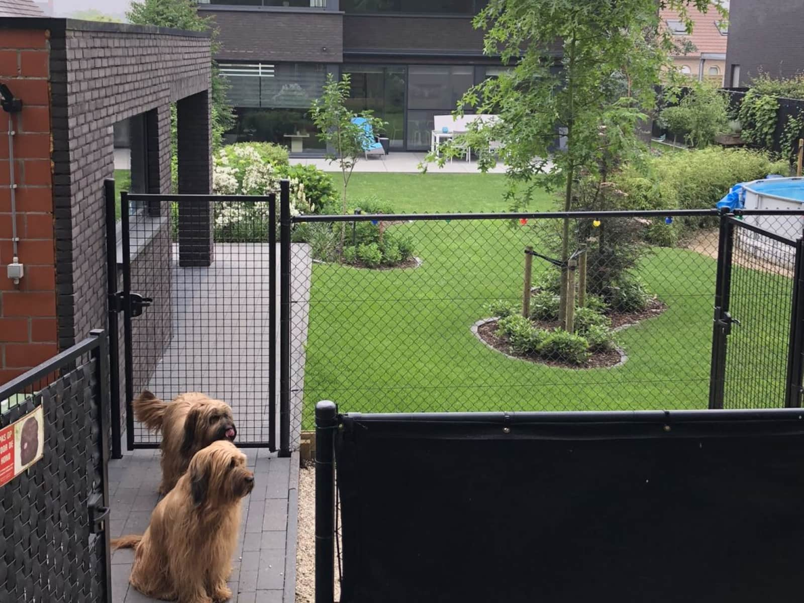 Housesitting assignment in Geel, Belgium