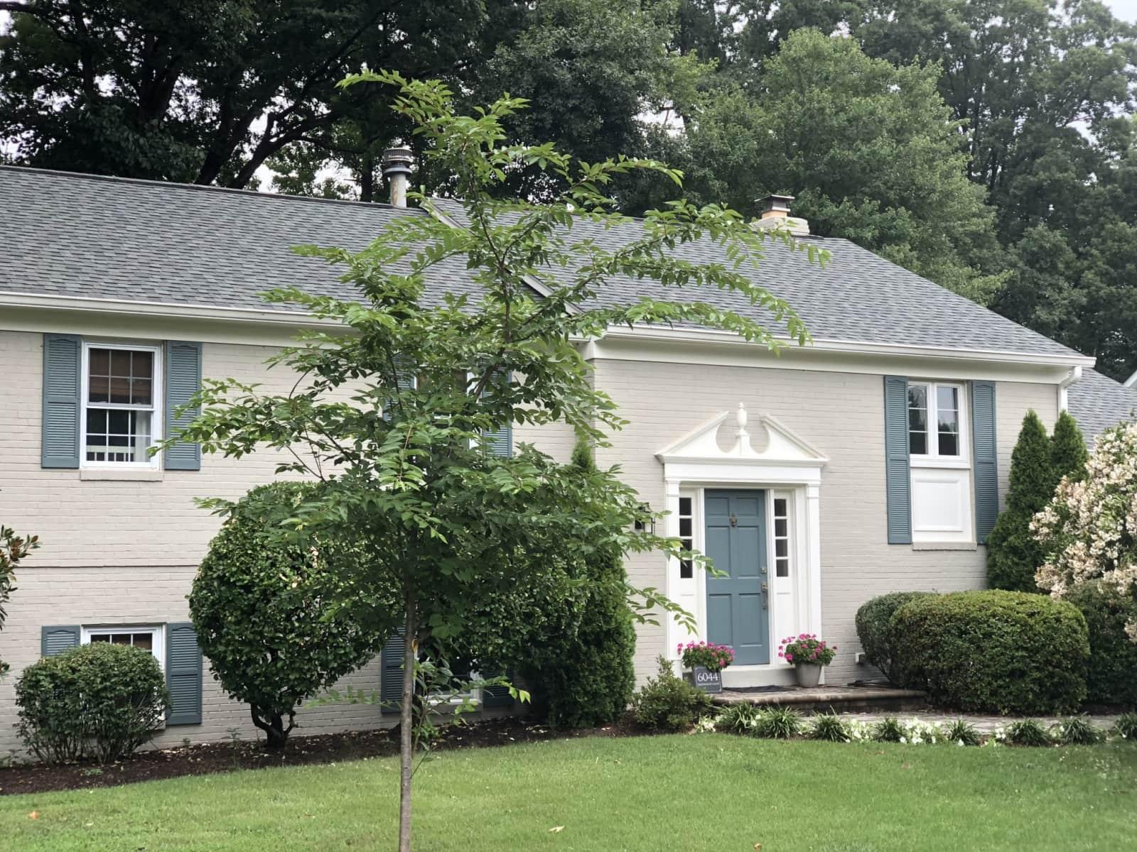 Housesitting assignment in Alexandria, Virginia, United States