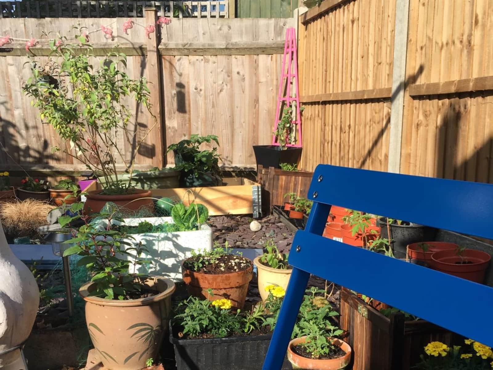 Housesitting assignment in Kempston, United Kingdom