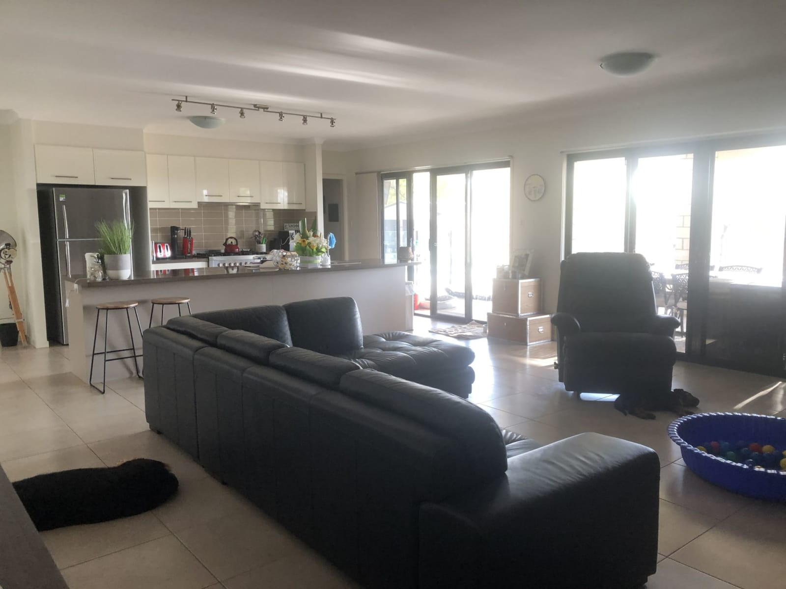 Housesitting assignment in Kensington Grove, Queensland, Australia
