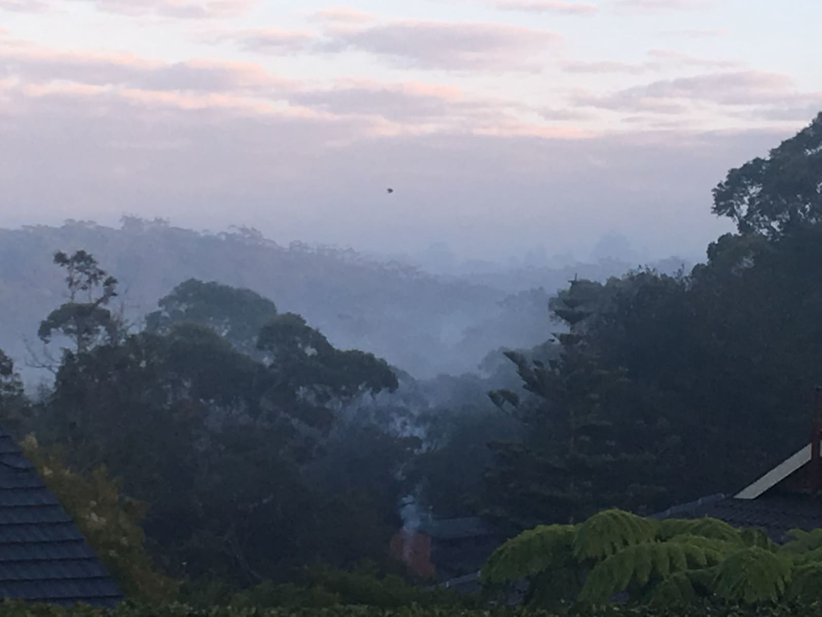 Housesitting assignment in Wahroonga, New South Wales, Australia