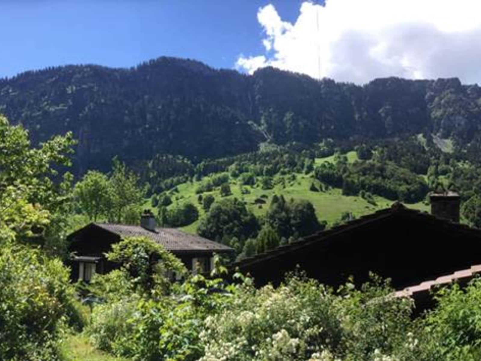 Housesitting assignment in Burglauenen, Switzerland