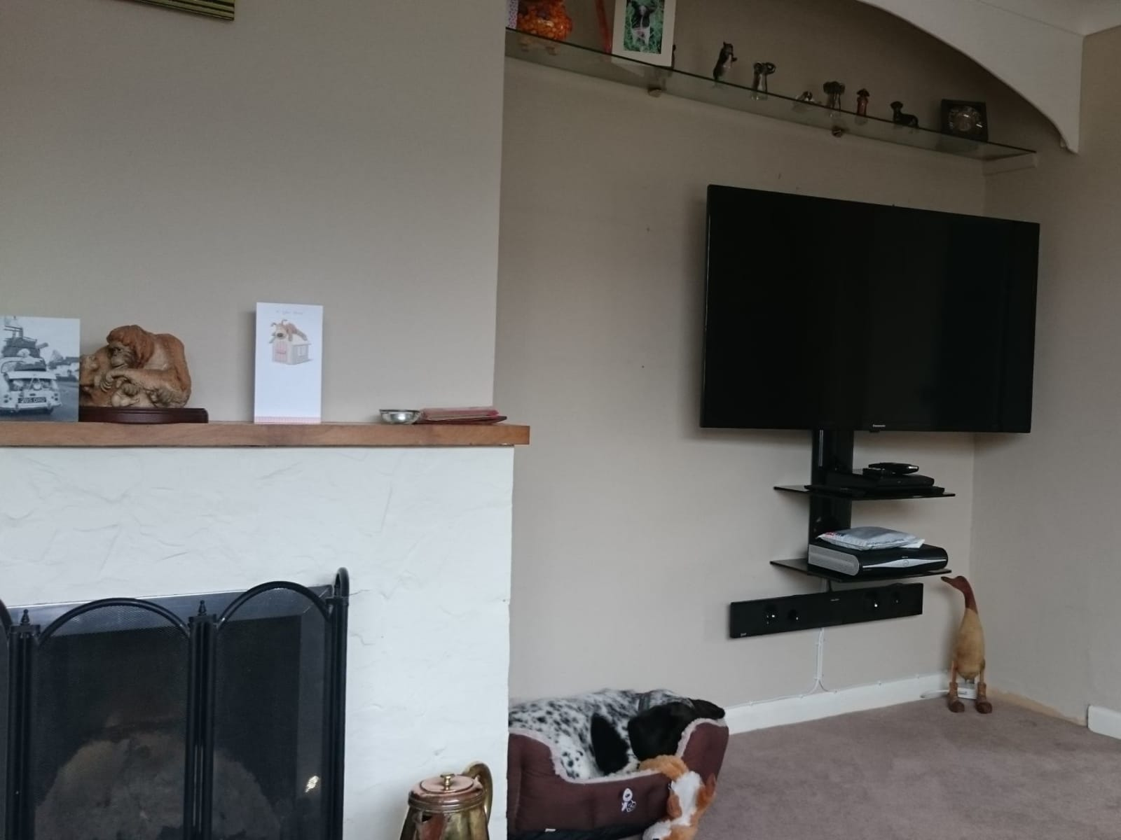 Housesitting assignment in Okehampton, United Kingdom