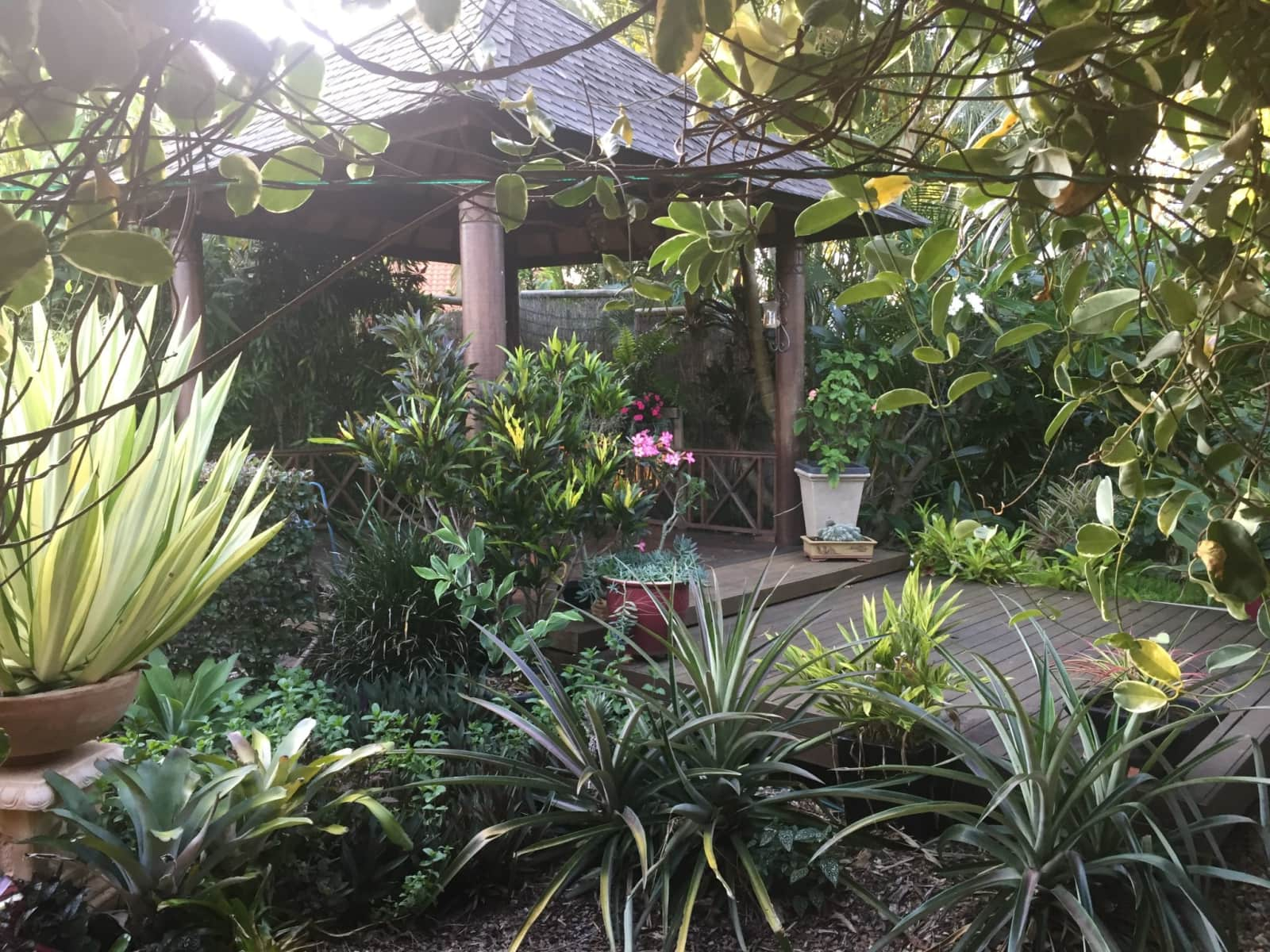 Housesitting assignment in Morayfield, Queensland, Australia