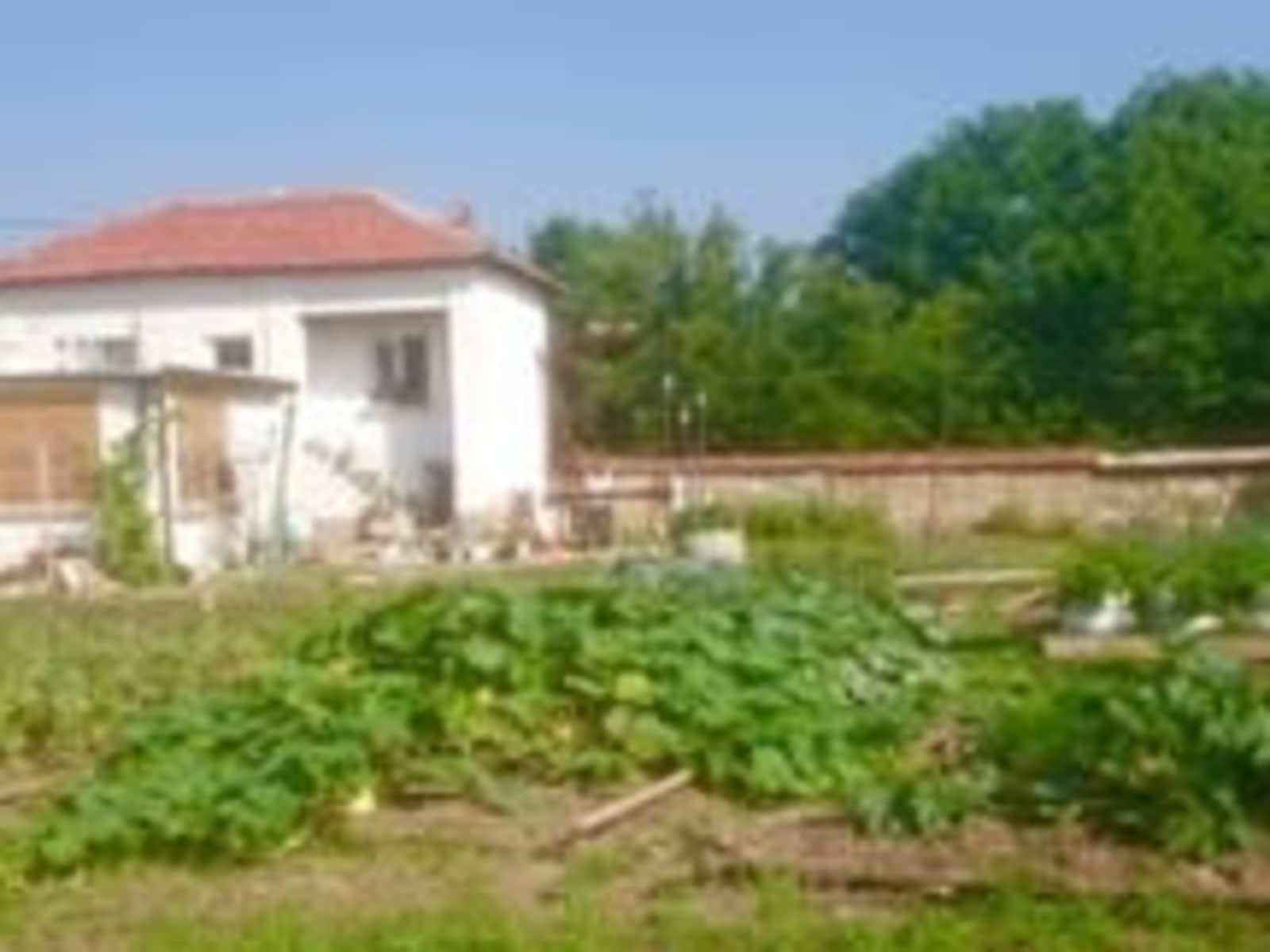 Housesitting assignment in Stara Zagora, Bulgaria