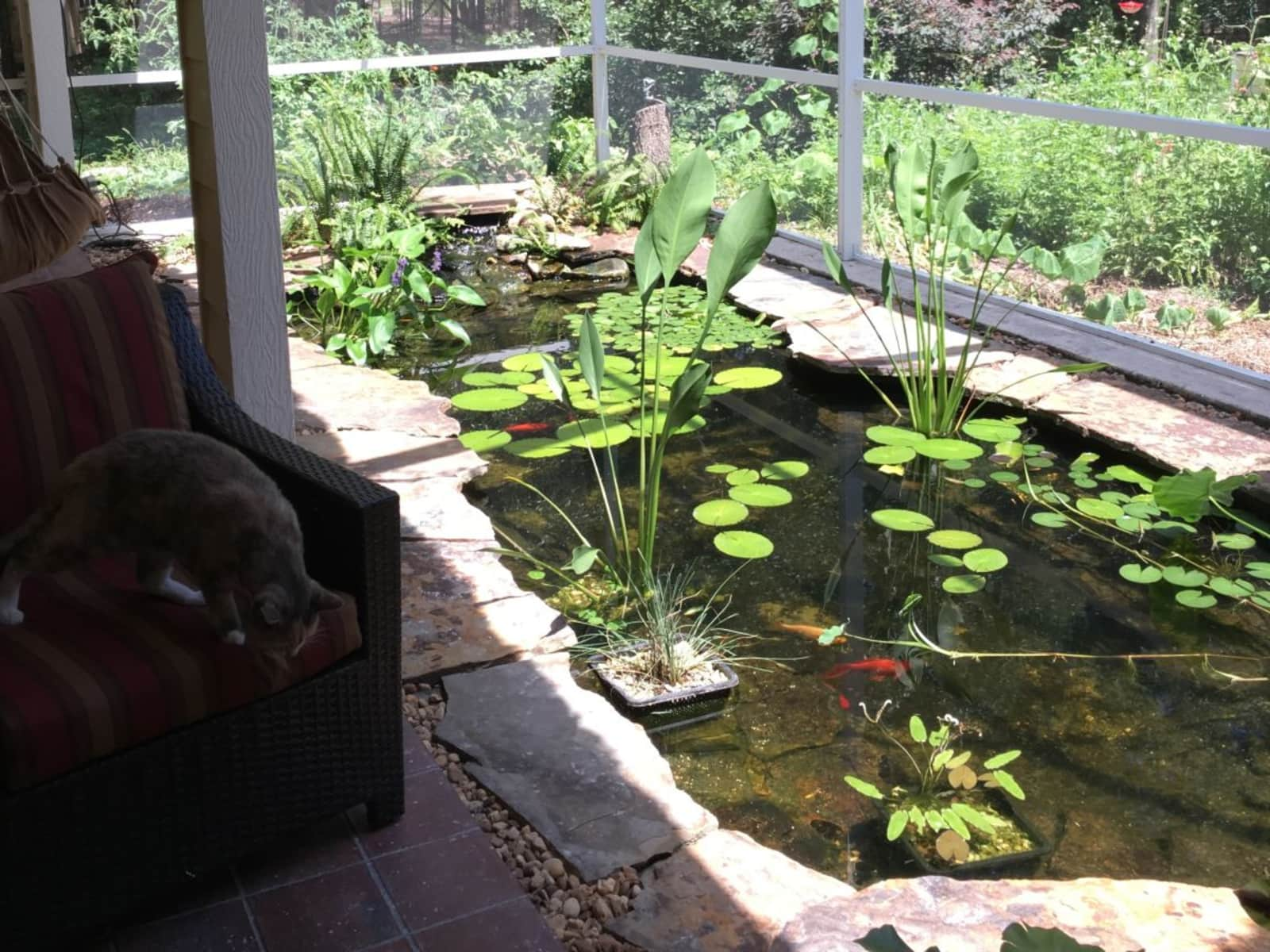 Housesitting assignment in Gainesville, Florida, United States