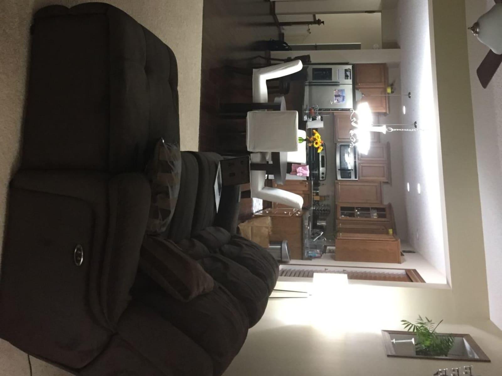 Housesitting assignment in Minneapolis, Minnesota, United States