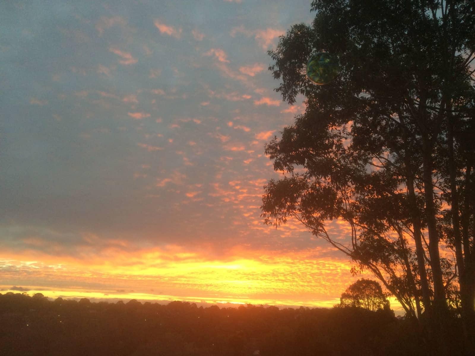 Housesitting assignment in Frankston, Victoria, Australia