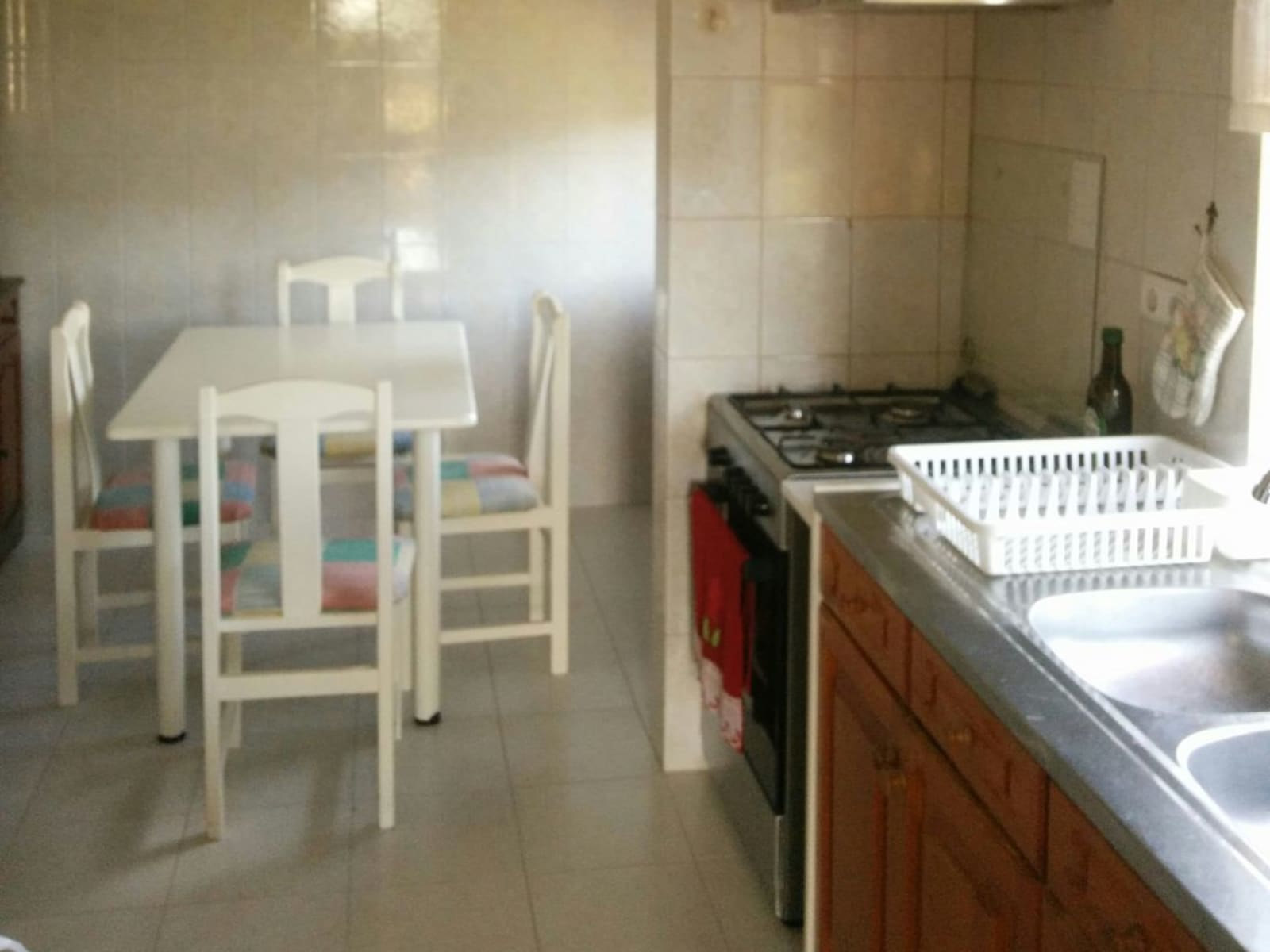 Housesitting assignment in Penela, Portugal