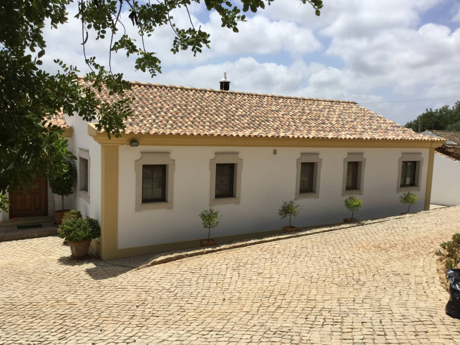 Housesitting assignment in Loulé, Portugal