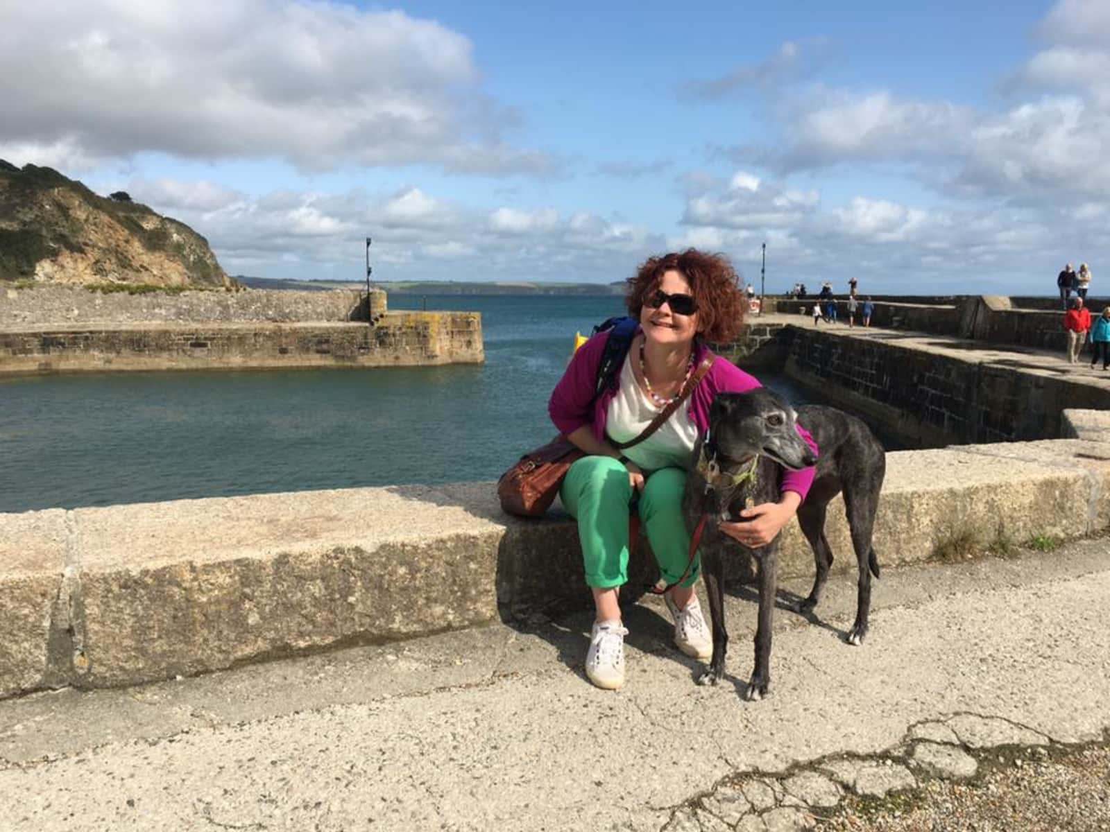 Housesitting assignment in Cwmbran, United Kingdom