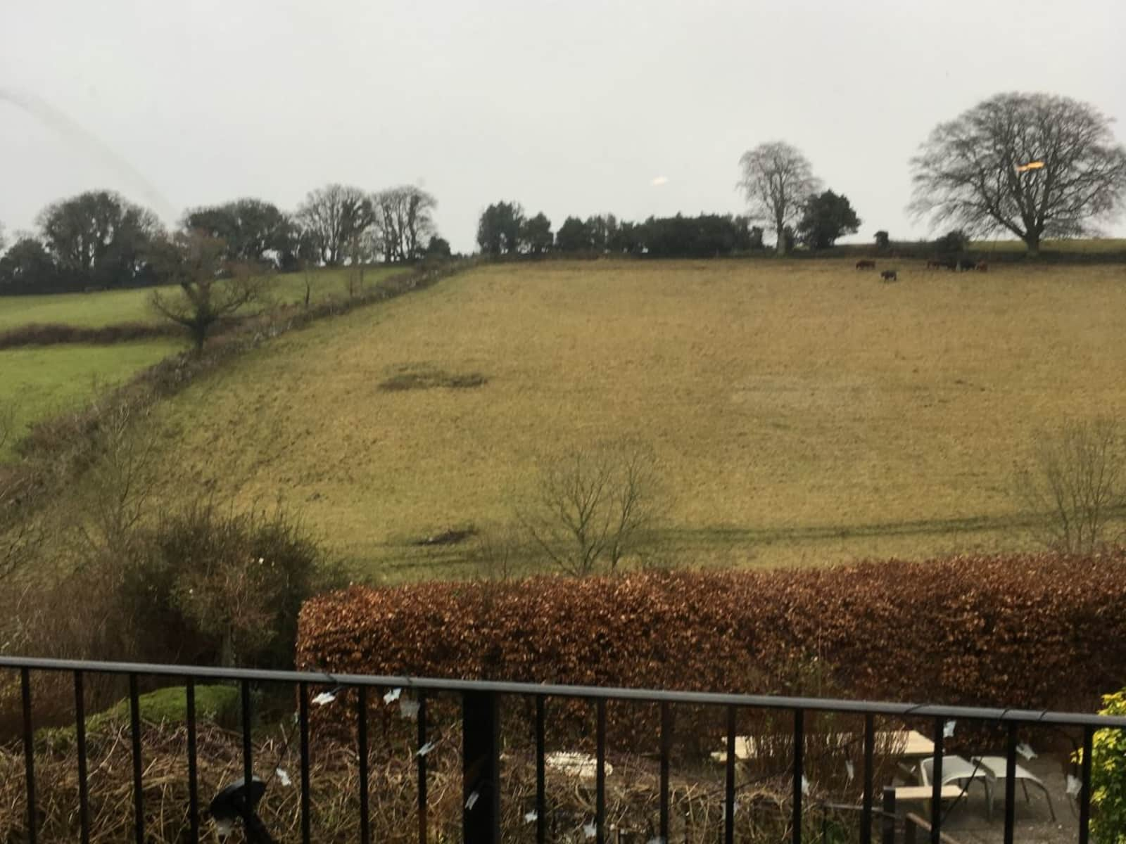 Housesitting assignment in Chagford, United Kingdom