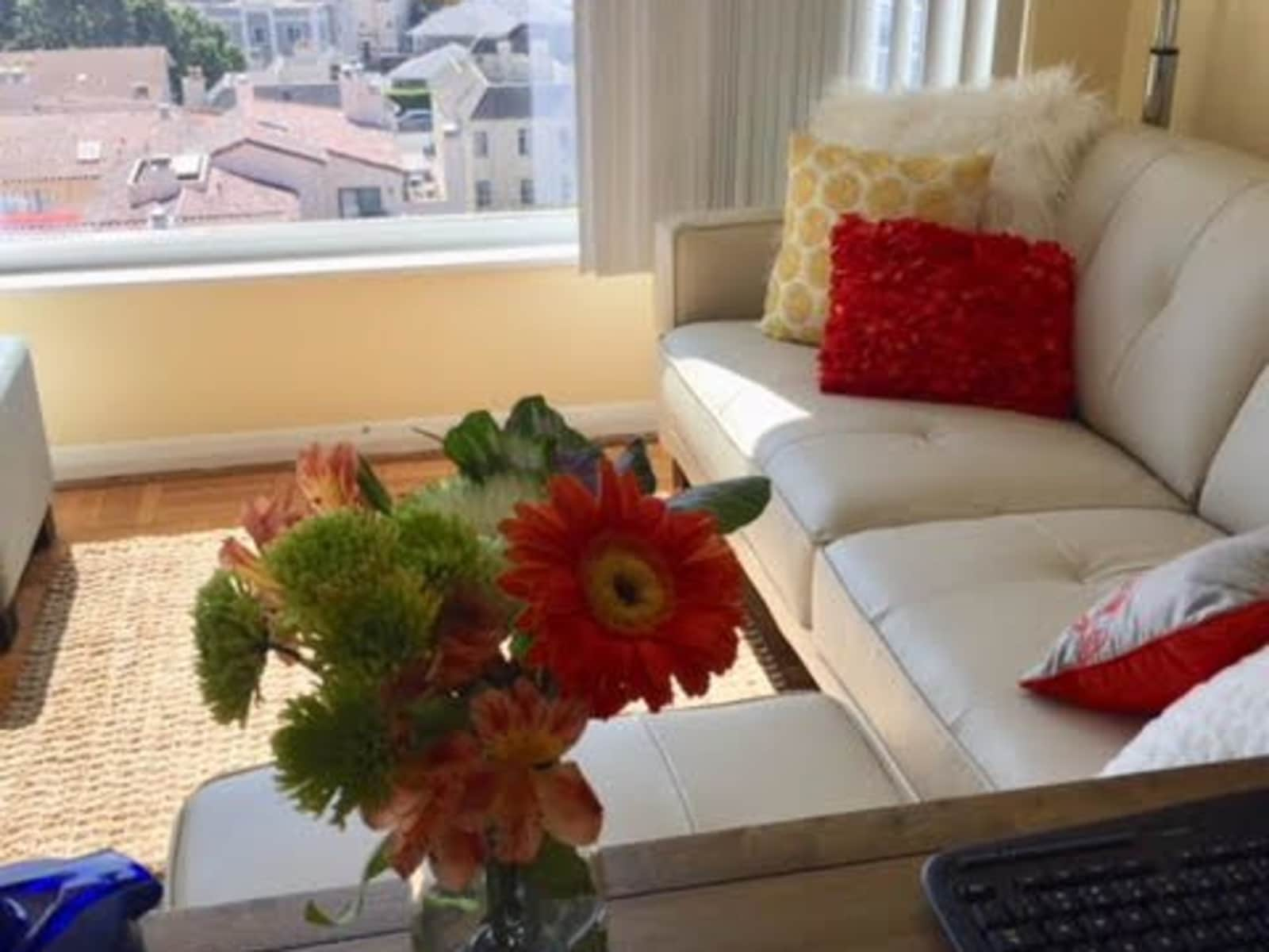 Housesitting assignment in San Mateo, California, United States