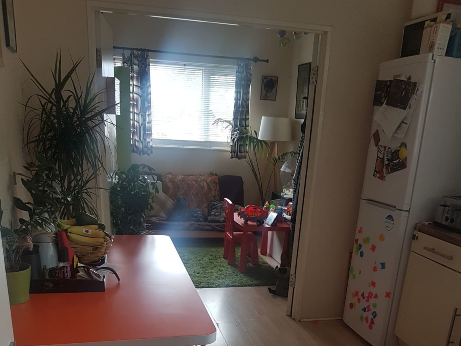 Housesitting assignment in Leytonstone, United Kingdom