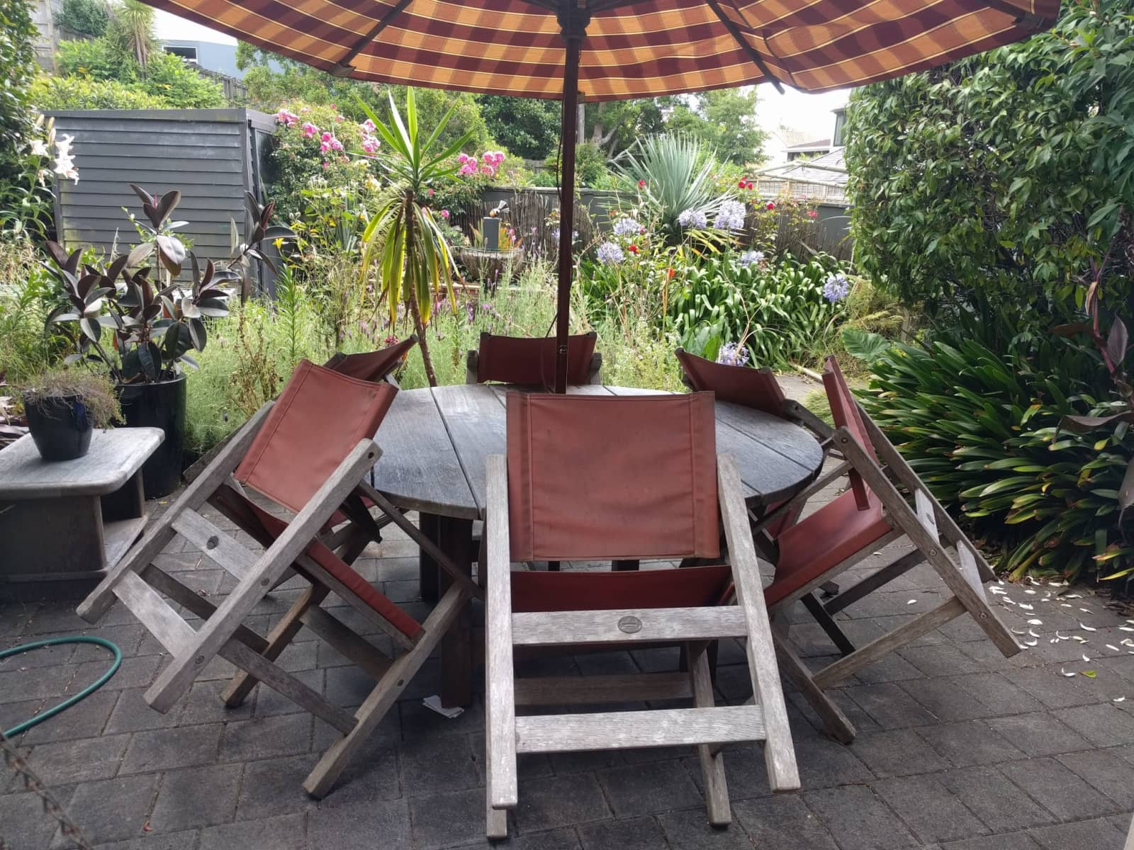 Housesitting assignment in Mission Bay, New Zealand