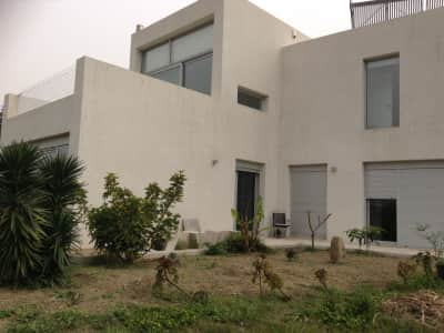 Cretan escape for cat lovers.....modernist house near beautiful beaches!