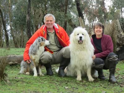 Mature, professional couple with extensive overseas, home owning and animal care experience