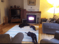 Housesitting assignment in Chipping Norton, United Kingdom - Image 3