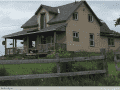 Housesitting assignment in Brennan's Hill, Quebec, Canada - Image 1