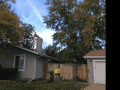 Housesitting assignment in Westminster, Colorado, United States - Image 1