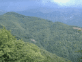 Housesitting assignment in Barga, Italy - Image 4