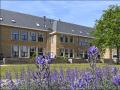 Housesitting assignment in Noordwijkerhout, Netherlands - Image 2