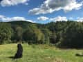 Housesitting assignment in Richmond, Vermont, United States - Image 2