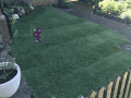 Housesitting assignment in Falmer, United Kingdom - Image 2