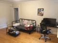 Housesitting assignment in Brookline, Massachusetts, United States - Image 1
