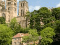 Housesitting assignment in Durham, United Kingdom - Image 2