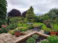 Housesitting assignment in Saundersfoot, United Kingdom - Image 1