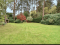 Housesitting assignment in Finchampstead, United Kingdom - Image 2