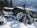 Housesitting assignment in Burglauenen, Switzerland - Image 2