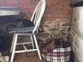 Housesitting assignment in Queniborough, United Kingdom - Image 3