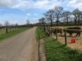 Housesitting assignment in Oakham, United Kingdom - Image 2