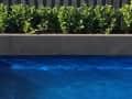 Housesitting assignment in Perth, Western Australia, Australia - Image 3