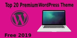 Top 20 Best Free Blog Themes on WordPress 2019