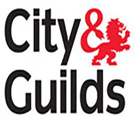 City & guilds qualified plumber