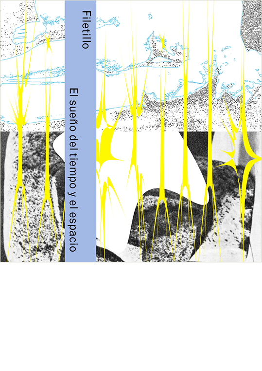 Cover design and creative writing for Filetillo.