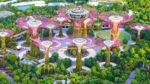 Singapur-Asya-Ucak-Bileti
