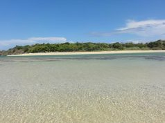 Fiji-Ucak-Bileti