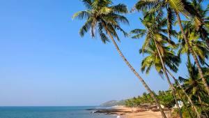 Goa-Hindistan-Asya-Ucak-Bileti