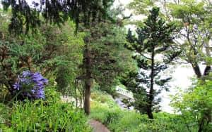 Batum-Botanik-Bahcesi