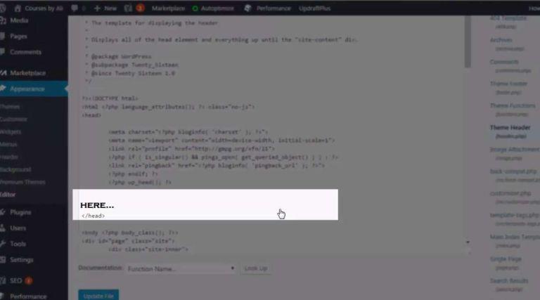 where paste google webmaster code into wordpress header