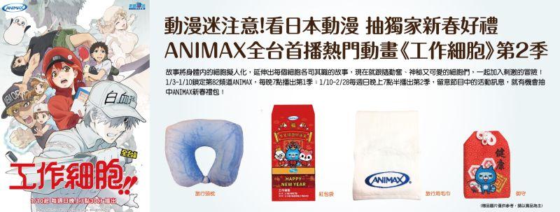 豐盟有線電視AXN:ANIMAX(工作細胞第二季)