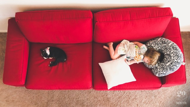 Little Girl And Puppy Asleep On Red Couch Indoors Home Living