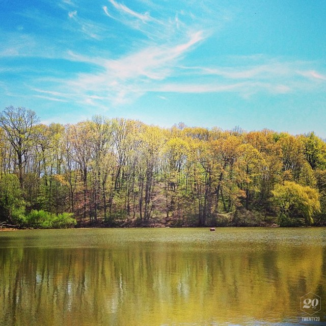 Beautiful Scenery Of Nature Local Pond Park Spring Afternoon Sunnyday Sky Blue Trees Golden Colors Landscape Peace Meditation Momentoftheday Stock Photo 2ffe925c Bff4 4e53 8985 2690cb898524